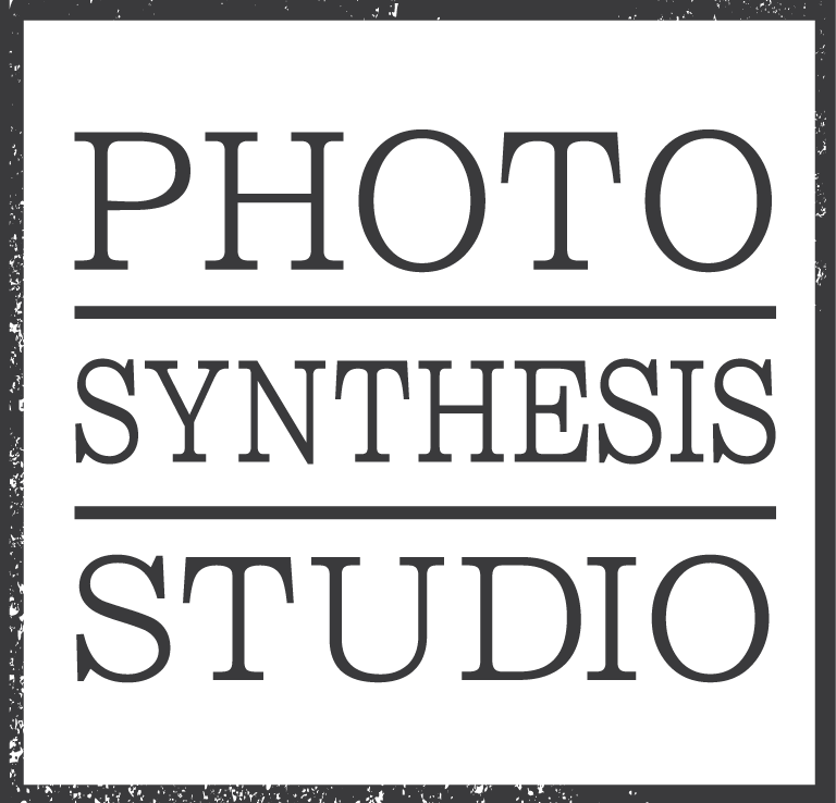 Photo Synthesis Studio