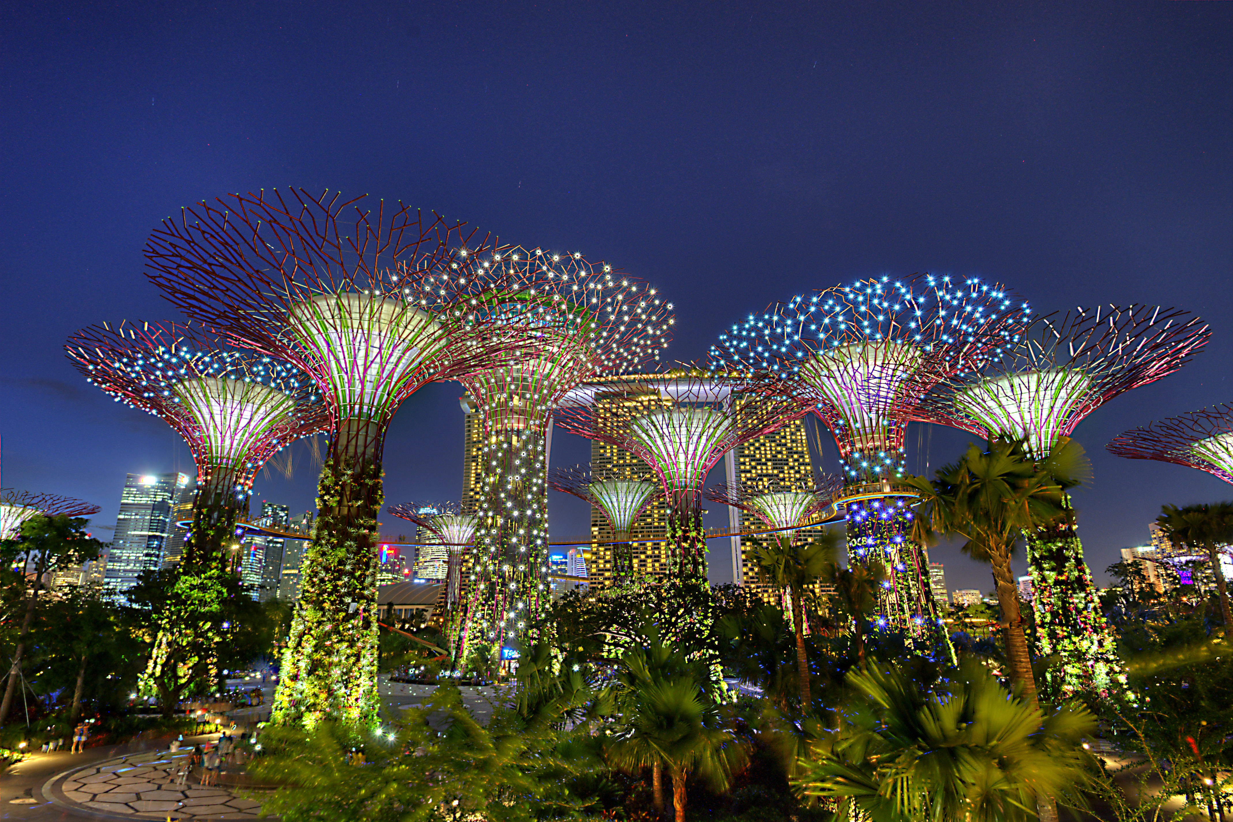 Singapore-Supertree-Grove-4